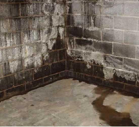 Гидроизоляция подвала изнутри от грунтовых вод для подземного паркинга должна производиться комплексно. Важно, чтобы команда, на которую возлагаются данные обязательства, смогла обеспечить грамотный выбор материалов и способов, исходя из основания здания. При таких условиях стыки, швы и заделанные трещины станут существенной преградой образованию грибков и плесени, вредных для человека.
